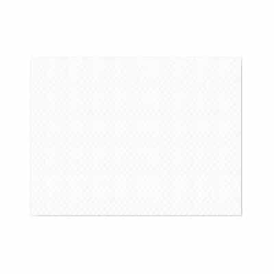 Tovaglietta bianca 30x40 cm. 1000 pz