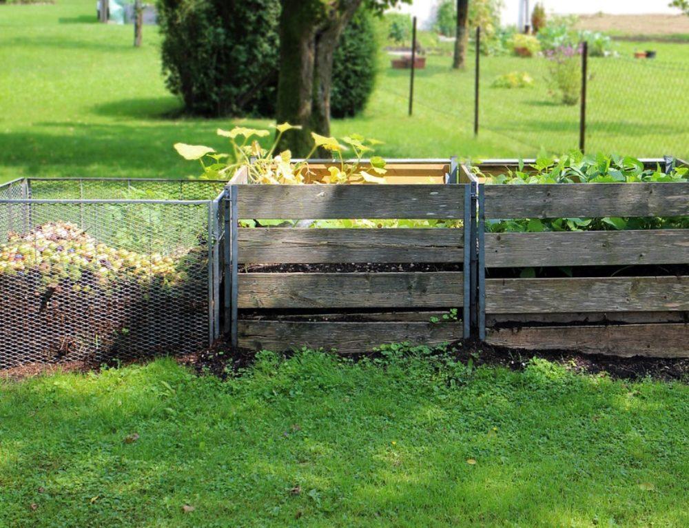 La compostiera: da quella domestica a quelle per ristoranti e comuni