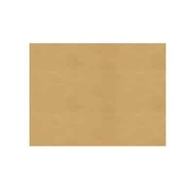 Carta-fritto-grezza-resistente-valida-per-alimenti-38x27