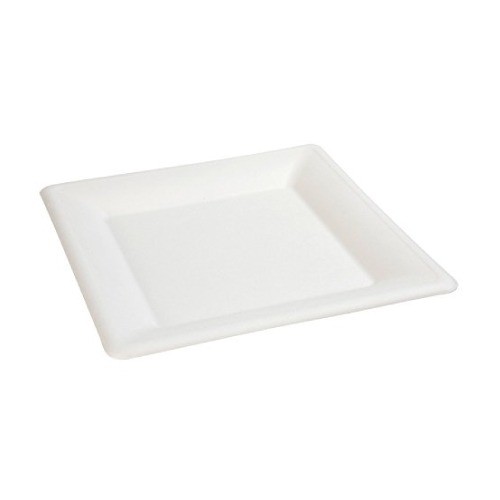 Piatto-ecologico-e-compostabile-quadrato-20-cm