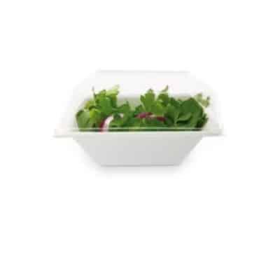 ciotole-ecologiche-e-compostabili-con-coperchio
