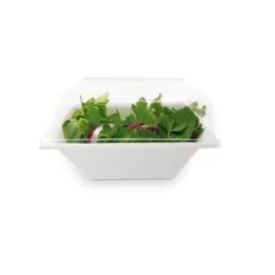 ciotole-ecologiche-e-compostabili-quadrate-16-cm.-vegan