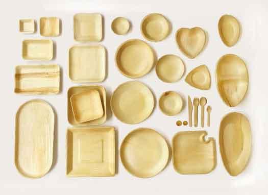 piatti-in-foglia-di-palma-roma