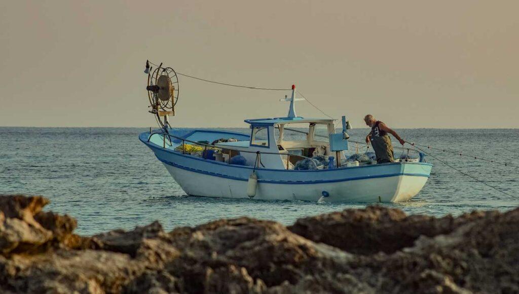 Monouso-per-asporto-compostabile-per-pescherie