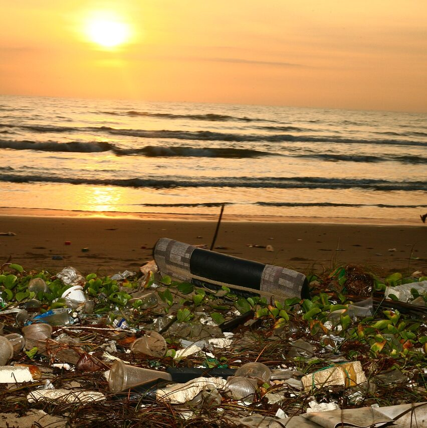 inquinamento-mare